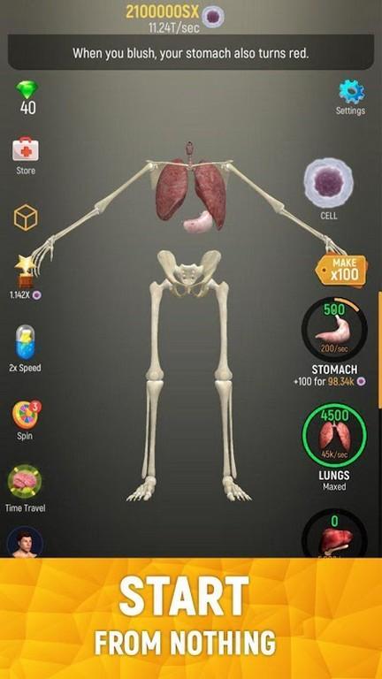 Cuerpo humano completo